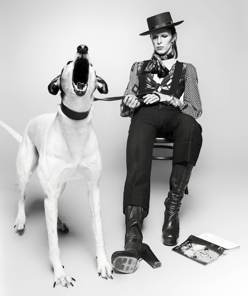 david_bowie_diamond-dogs2